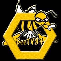 BeeTV84 - Dadant 12er - Komplettbeute